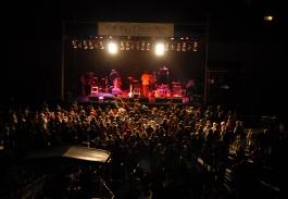 Deep Roots Festival Crowd