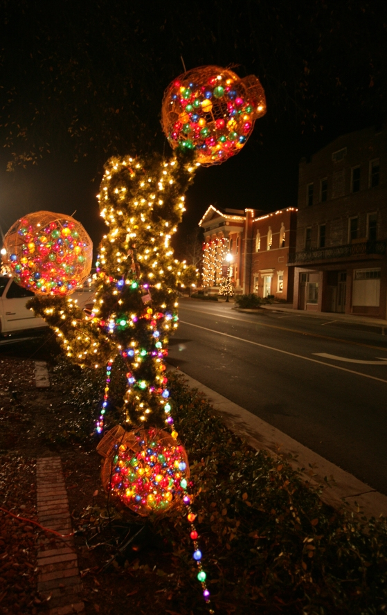 002-Downtown Christmas-MilledgevilleBaldwin County -120707