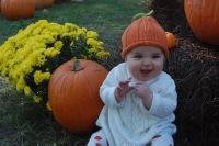 dsc_0098-pumpkin